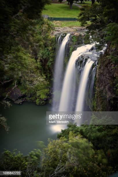 whangarei falls in northland - whangarei heads stockfoto's en -beelden