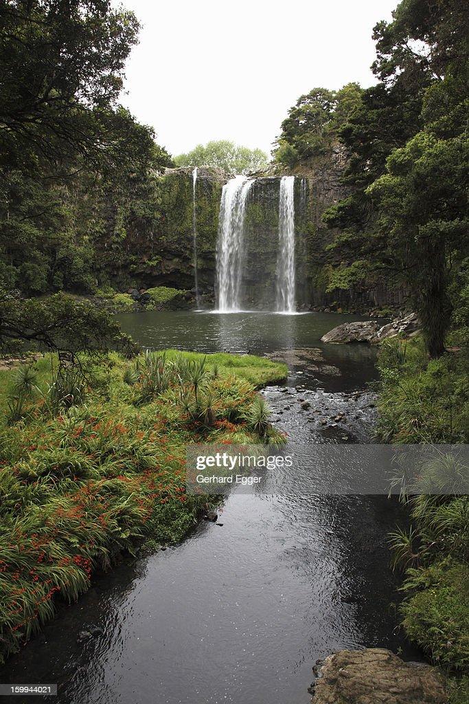 Whangarei Waterfall : Stock Photo