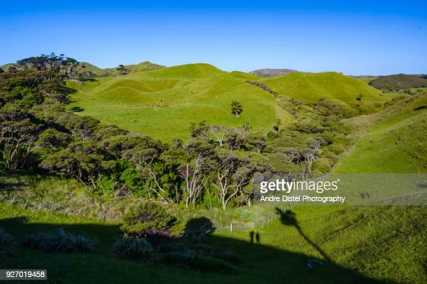 wharariki beach and farewell spit - new zealand - felsformation stock pictures, royalty-free photos & images