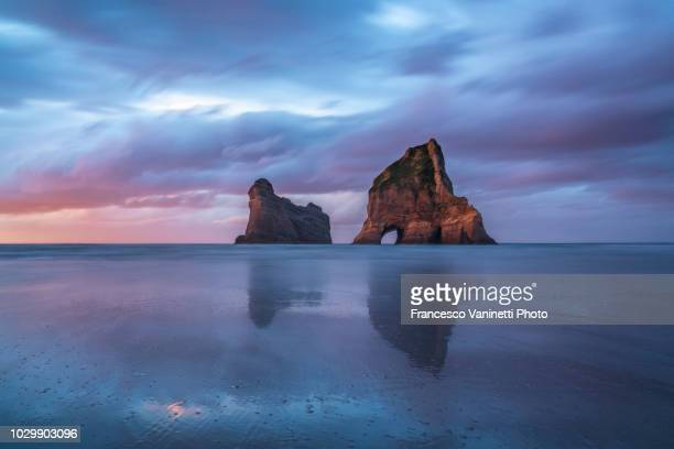 wharariki beach at sunset, new zealand. - kahurangi national park bildbanksfoton och bilder