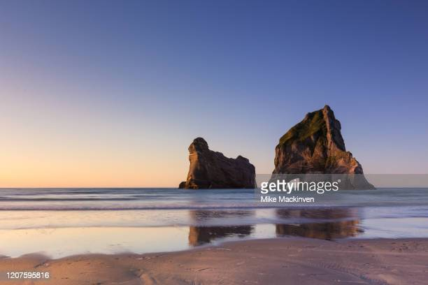 wharariki beach - domestic animals stock pictures, royalty-free photos & images