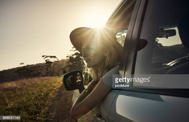 what a beautiful country we live in - tourism stock pictures, royalty-free photos & images