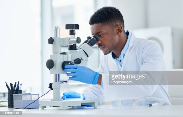 what an interesting find - microscope stock pictures, royalty-free photos & images
