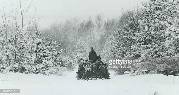 What better way to pass time until Christmas than bundling up against the cold and taking a ride on a sleigh drawn by a horse on your way to find a...