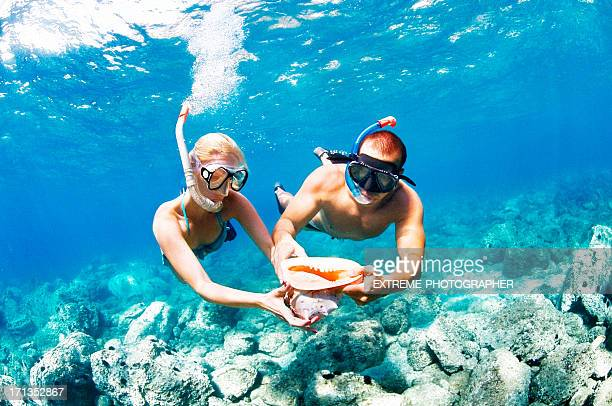 what is love - snorkeling stock pictures, royalty-free photos & images