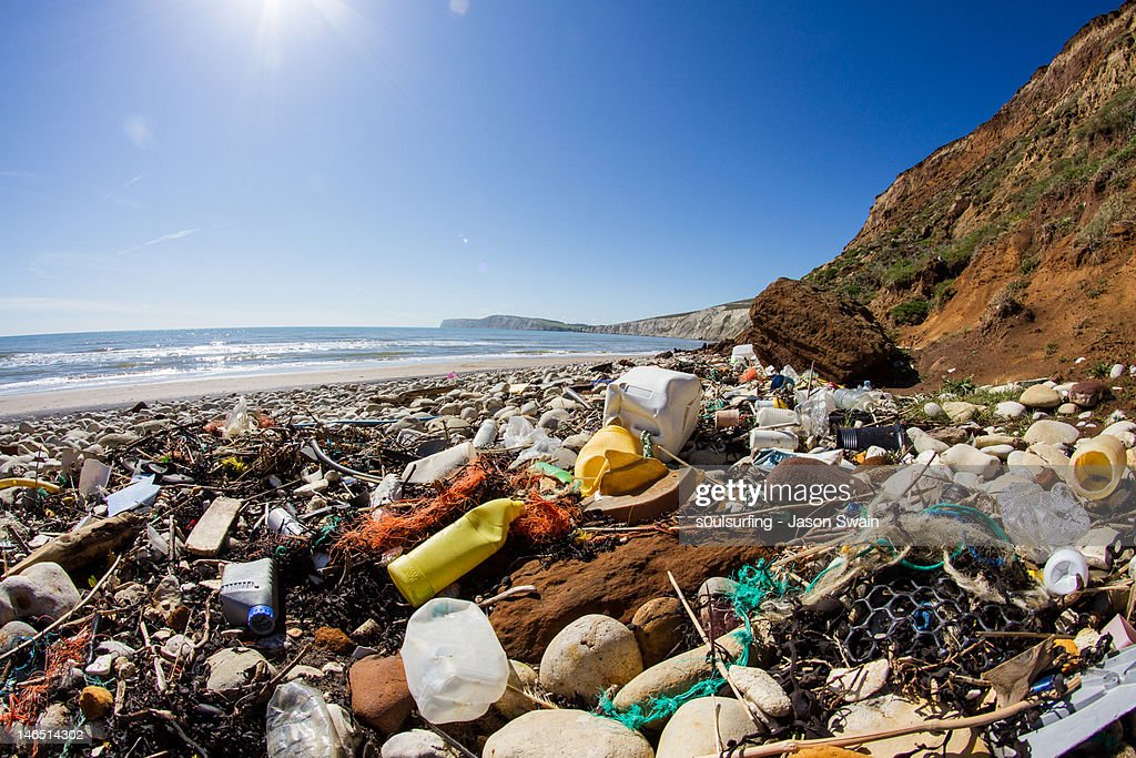What waste : Stock Photo