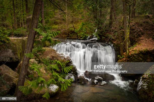 whatcom falls park - wpa stock pictures, royalty-free photos & images