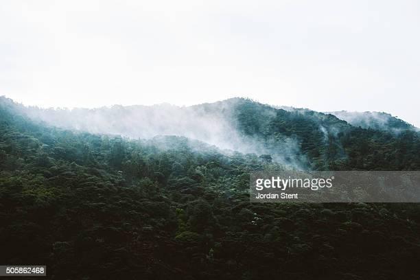 Whatipu Ranges