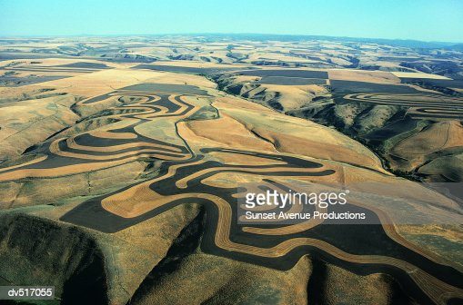 Wheat and fallow fields, Palouse, Washington, USA