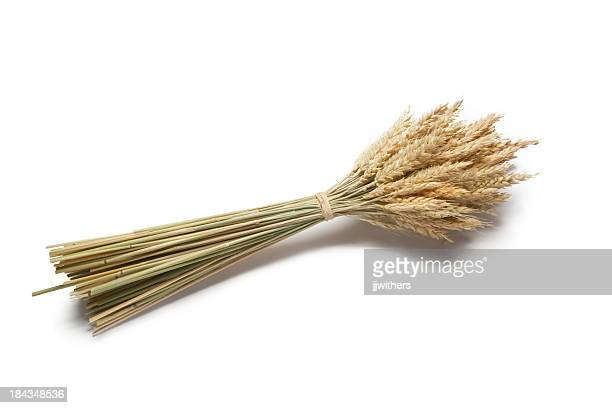 wheat bundled stalks - bundle stock pictures, royalty-free photos & images