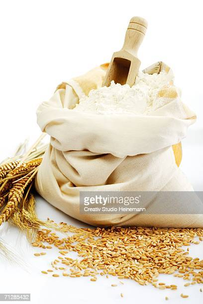 Sack of flour and wheat grains, close-up