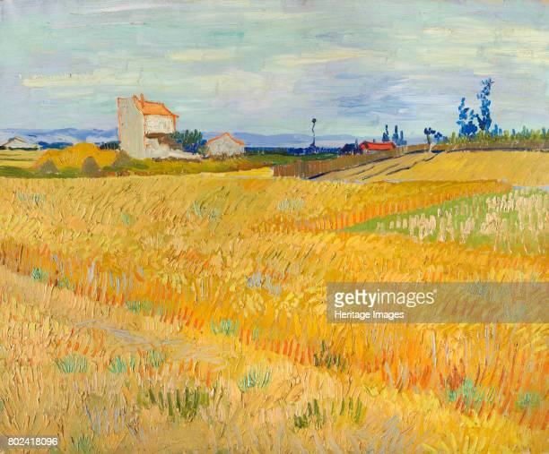 Wheat Field 1888 Found in the collection of Fondation De Boer Amsterdam