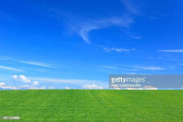 wheat field and clouds, hokkaido - horizon over land stock photos and pictures