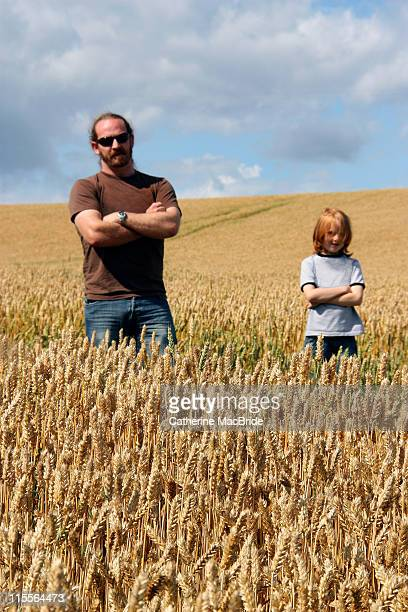 wheat field bouncers - catherine macbride stock-fotos und bilder