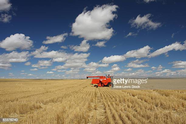 Wheat Field with Combine