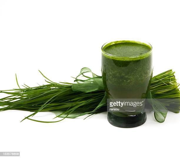 Weizen Gras Getränke