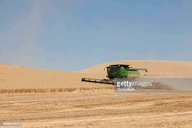 wheat harvest - john deere tractor stock photos and pictures