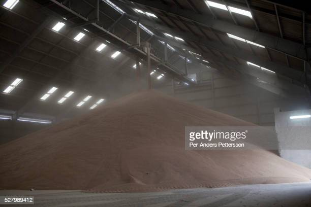 Wheat is pumped in at the WFP World Food Program storage facility in the Djibouti port on August 4 2011 in Djibouti Djibouti A severe drought has...
