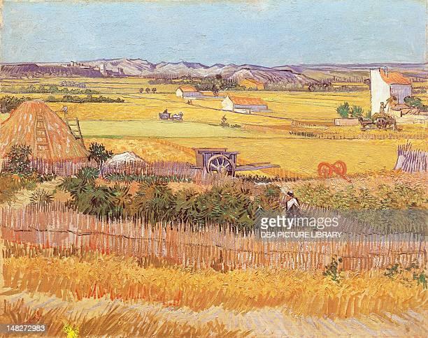 Wheatfields by Vincent van Gogh Amsterdam Stedelijk Museum