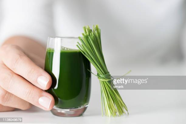 wheatgrass - antioxidant stock pictures, royalty-free photos & images