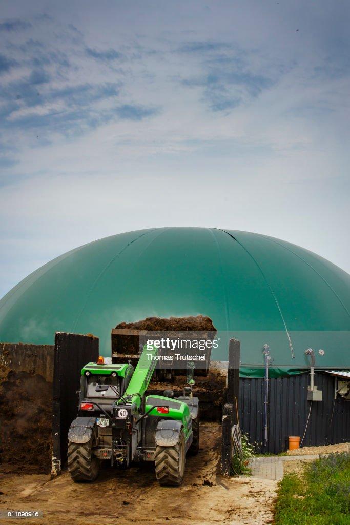 A wheel loader loads manure into a biogas plant on a farm on