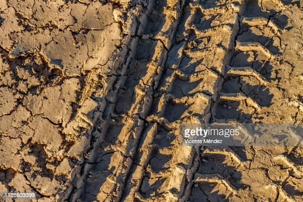 Wheel tracks in the mud