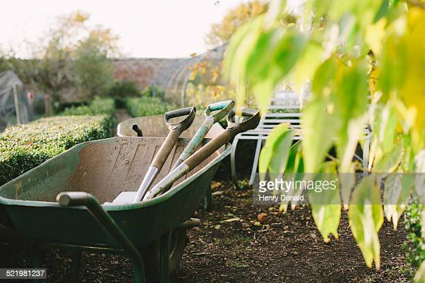wheelbarrow and spades in kitchen garden - wheelbarrow stock photos and pictures
