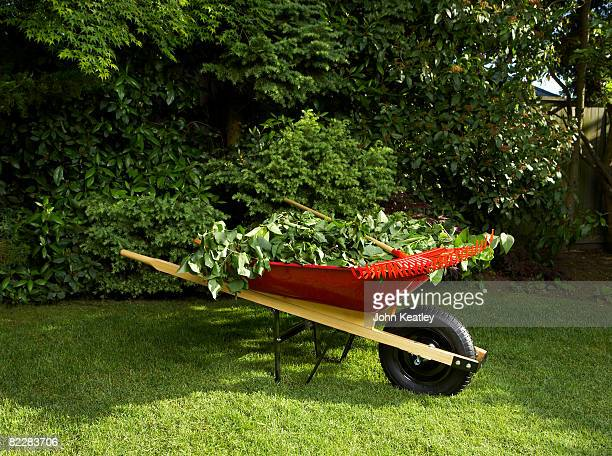 wheelbarrow full of branches - wheelbarrow stock photos and pictures