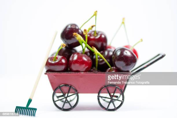 Wheelbarrow full of sweets and tasty cherries