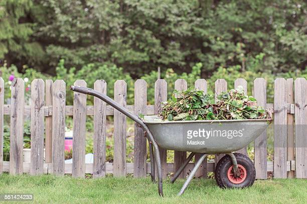 wheelbarrow full of weeds by fence at farm - wheelbarrow stock photos and pictures