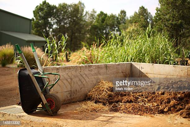 A wheelbarrow is seen next to a dung pile near the elephant enclosure at Taronga Western Plains Zoo on April 20 2012 in Dubbo Australia The popular...