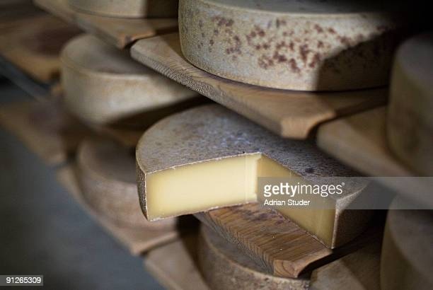 Wheels of Swiss mountain cheese