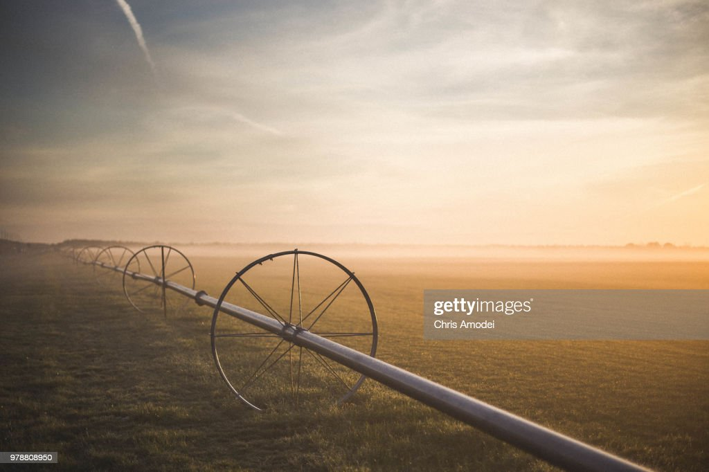Wheels on field at sunrise, Long Island, New York, USA : Stock Photo