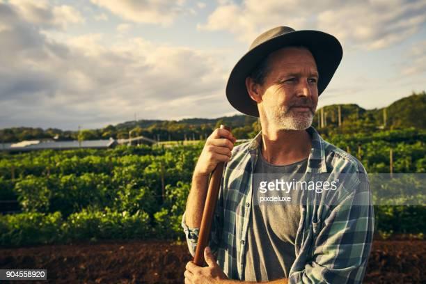 quando se trata de agricultura, que tem que ser as mãos na - agricultor - fotografias e filmes do acervo