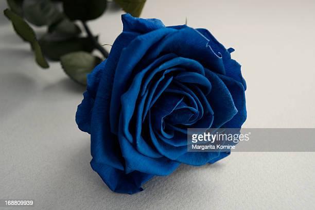 when love is blue