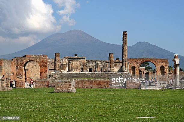 When Vesuvius erupted on 24 August AD 79, it engulfed the two flourishing Roman towns of Pompei and Herculaneum, as well as the many wealthy villas...