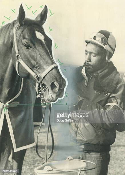 Where is he A portion of the over 6000 spectators who showed up at Woodbine racetrack this morning to watch Triple winner Secretariat work out peer...
