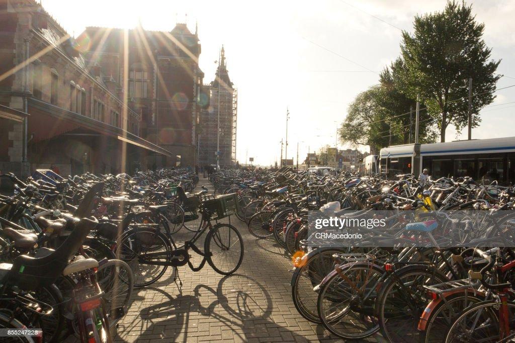 Where is my bike? : Stock Photo