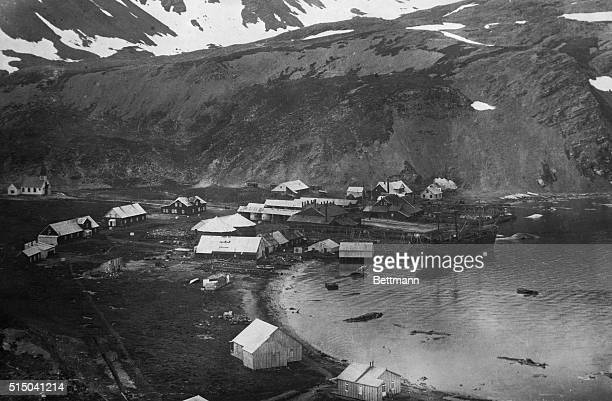 Where Shackleton War Buried A view of the trading settlement at South Georgia which is farthest south in the Arctic Circle and the most inhabited of...