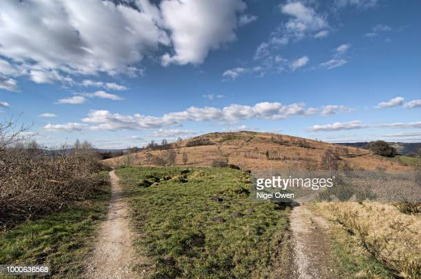 which path ? - nigel owen stock pictures, royalty-free photos & images