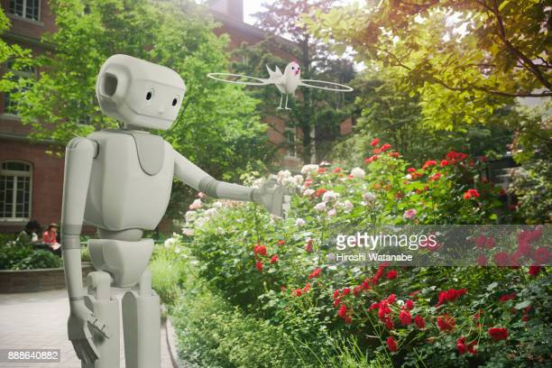 a.i. which takes a walk in the rose garden - artificial intelligence stock pictures, royalty-free photos & images