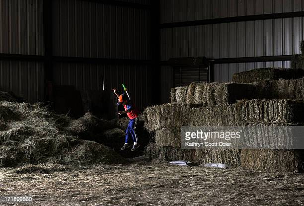While his family unloads a truck full of donated horse feed Bryson Mosher plays on the bales of donated hay As the cost of hay and feed keeps rising...