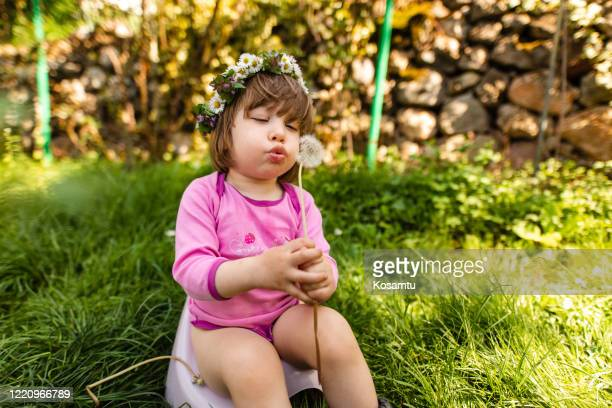 while on potty training little girl is occupied with blowing dandelions - kids peeing stock pictures, royalty-free photos & images