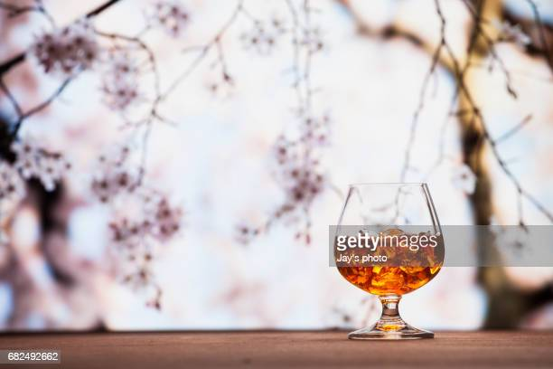 Whisky in cherry blossoms background