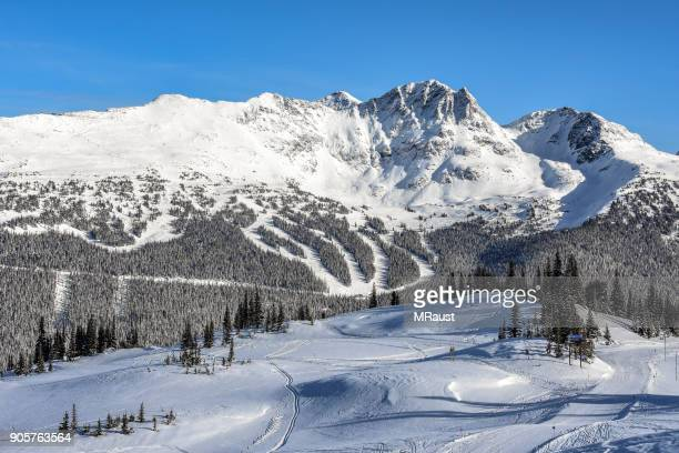 whistler blackcomb ski area - whistler british columbia stock pictures, royalty-free photos & images