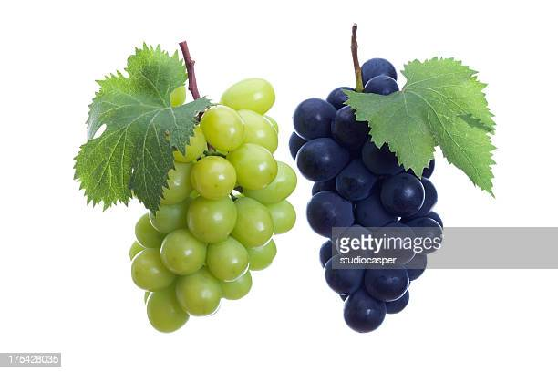 white and black grapes  - druif stockfoto's en -beelden