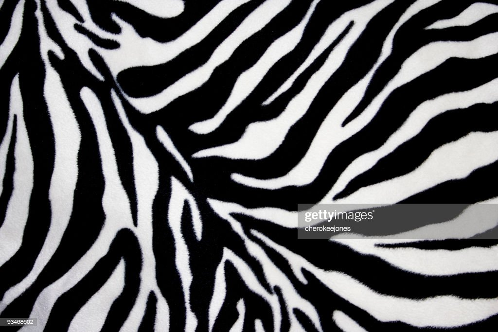 Zebra Background Design Stock Photo Getty Images