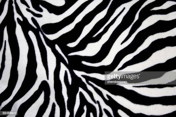 White and black zebra background