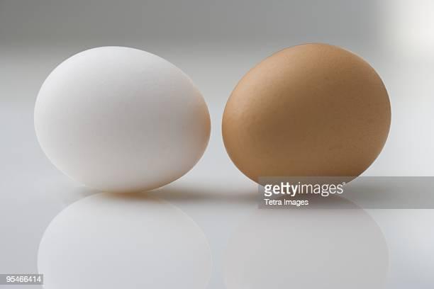 a white and brown egg - ei bruin stockfoto's en -beelden