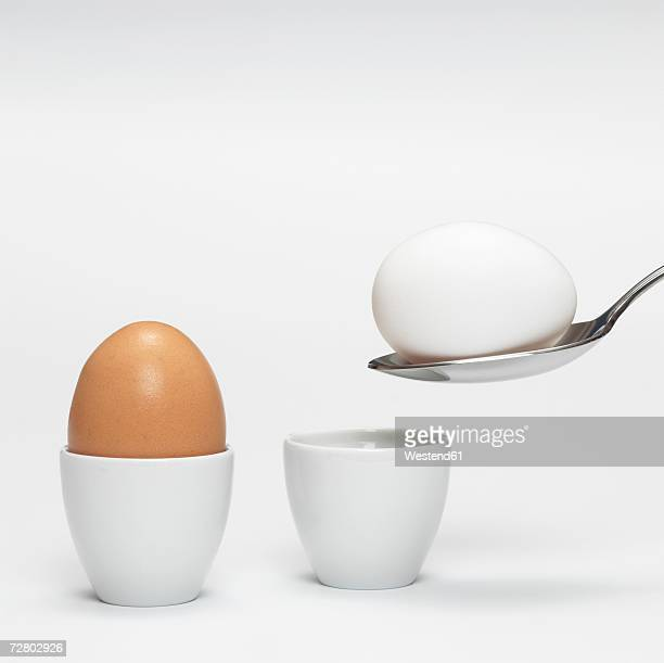White and brown organic eggs in eggcup
